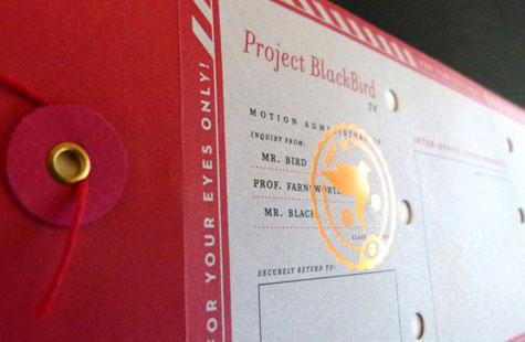 335-blackbird-1