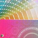 color-logic-125