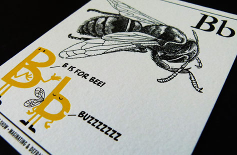 462-flashcards-2