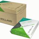 Rolland_Enviro_paper