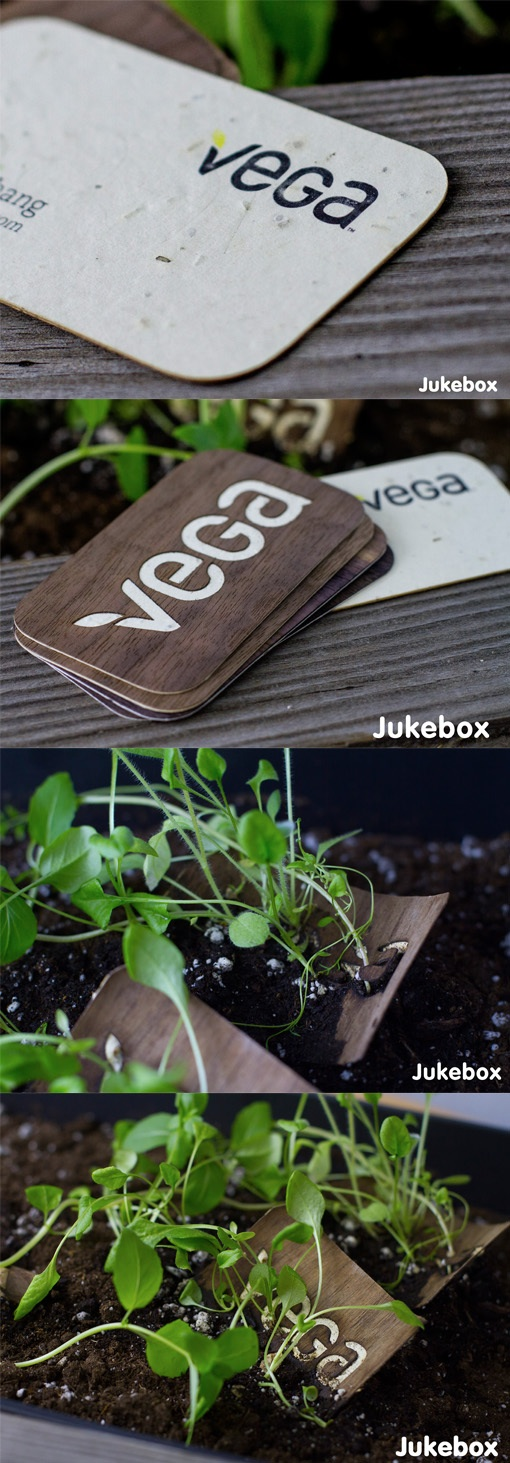 seeded business card