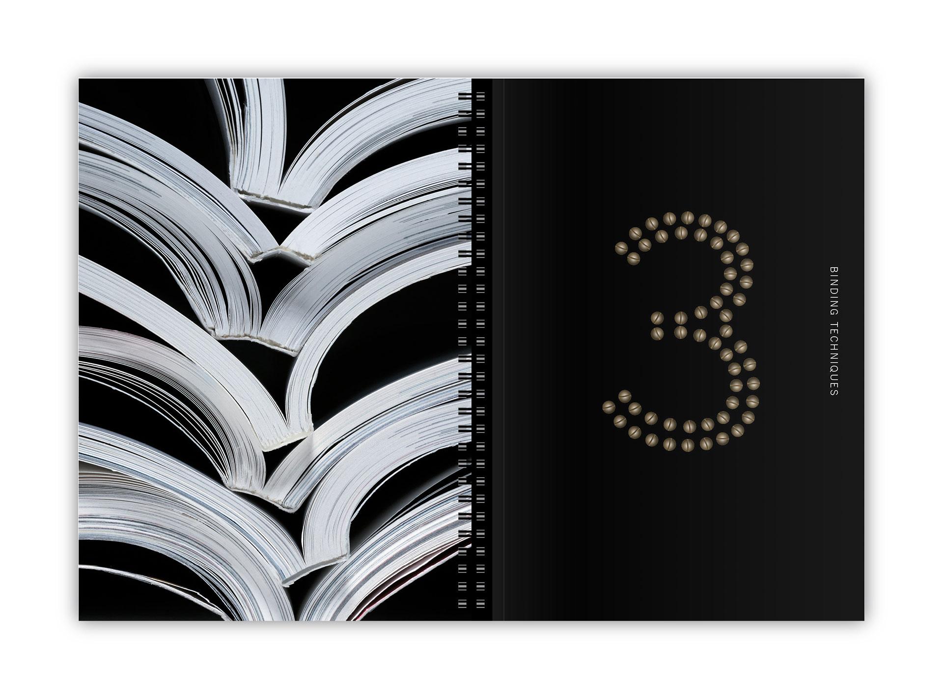 85-sappi-standard6-3