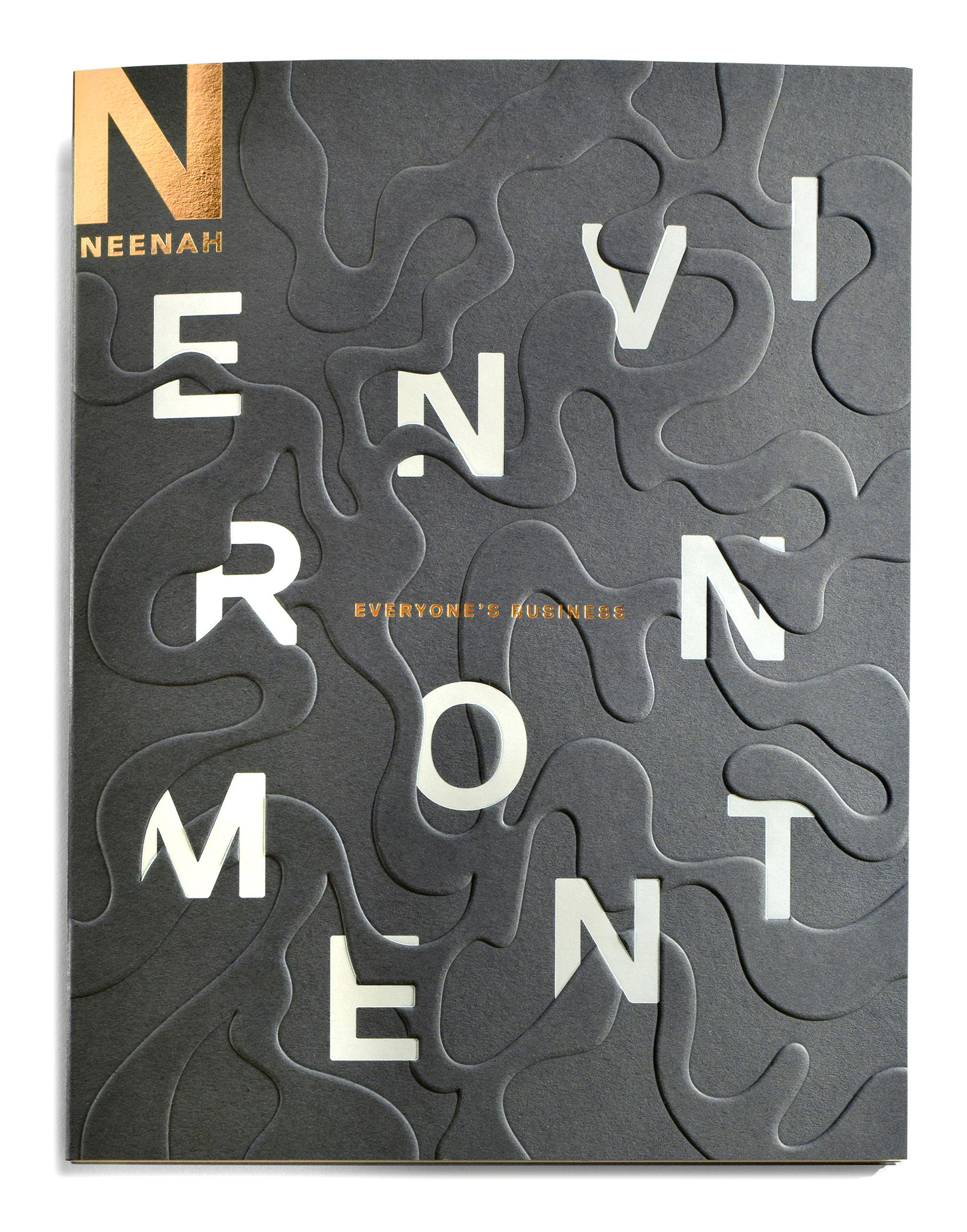 neenah-environment-1
