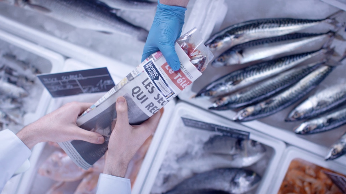 daily catch packaging