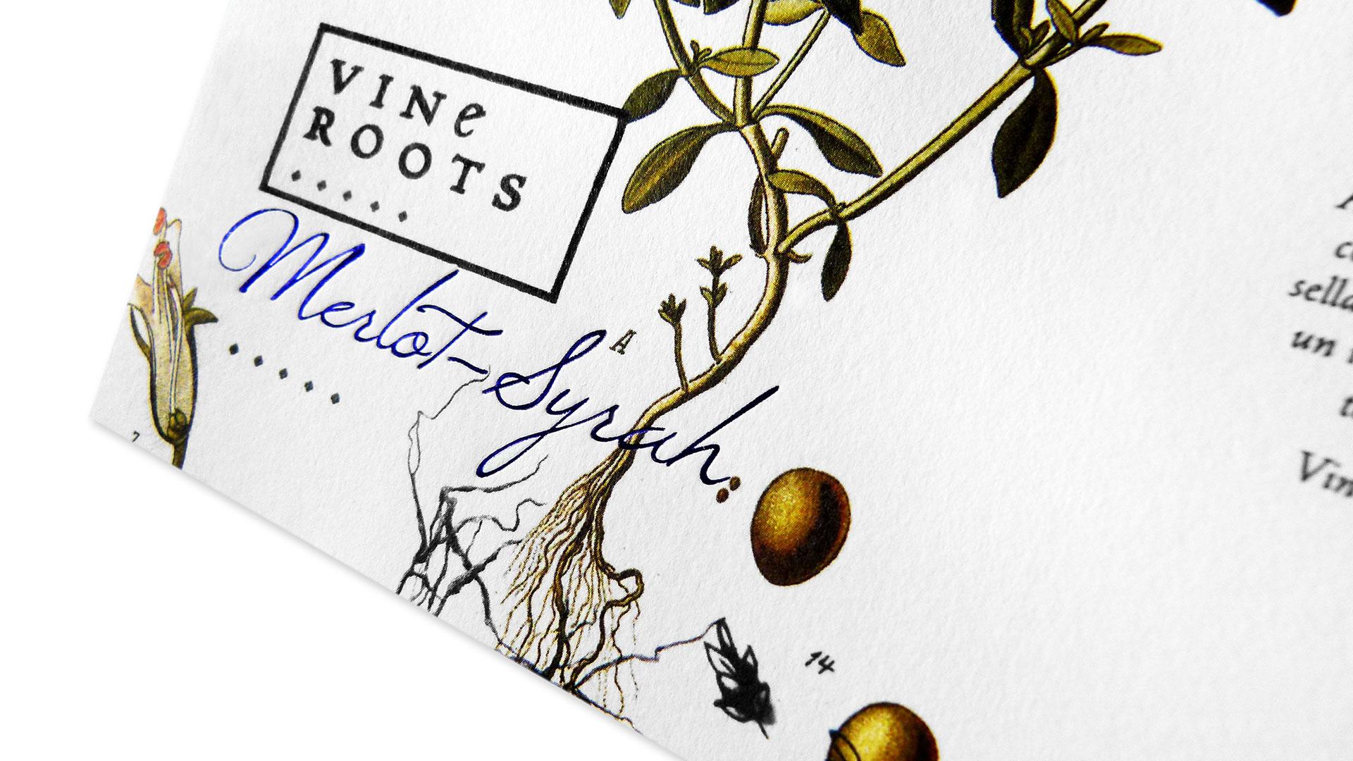 784-vine-roots-1
