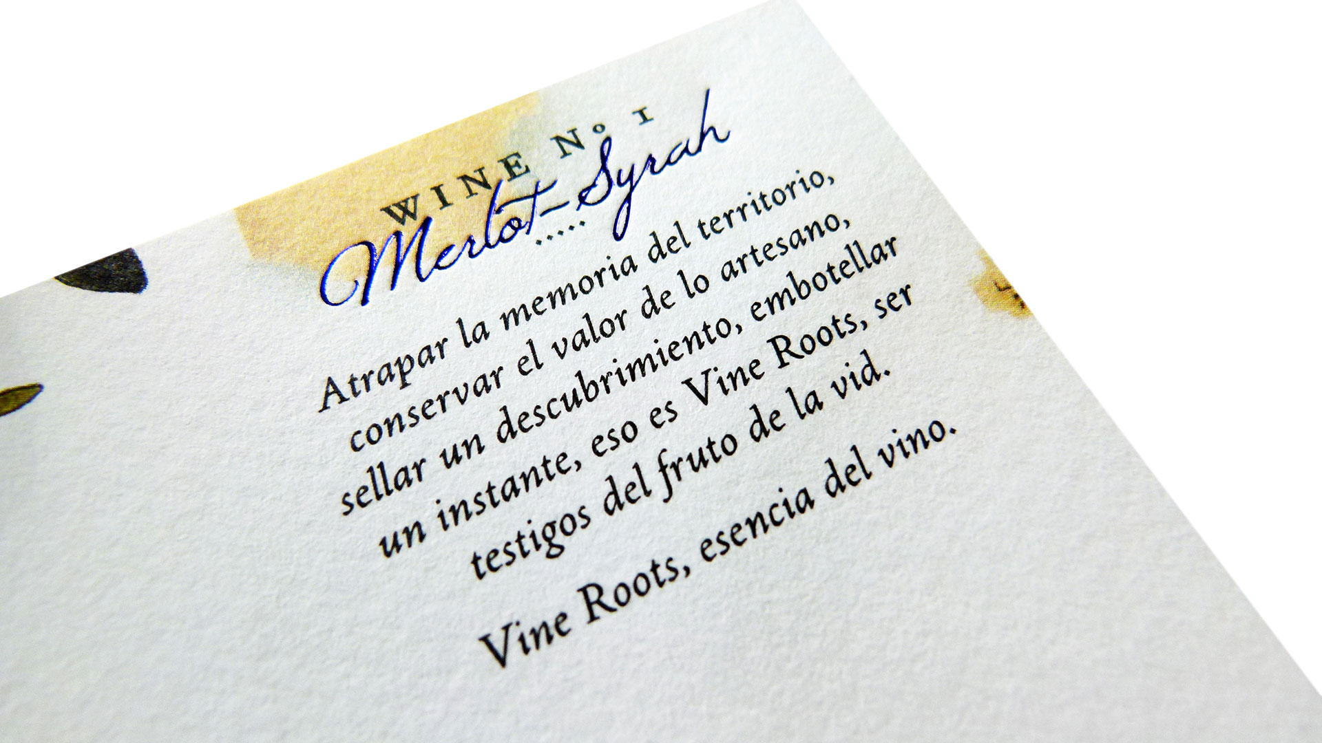 784-vine-roots-4