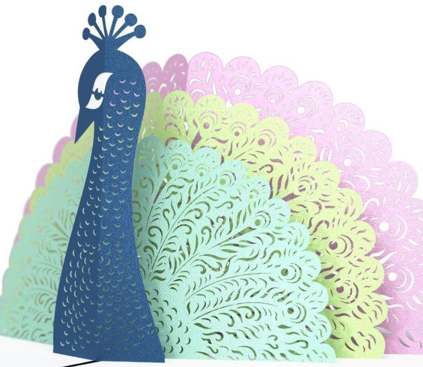 Peacock - closeup