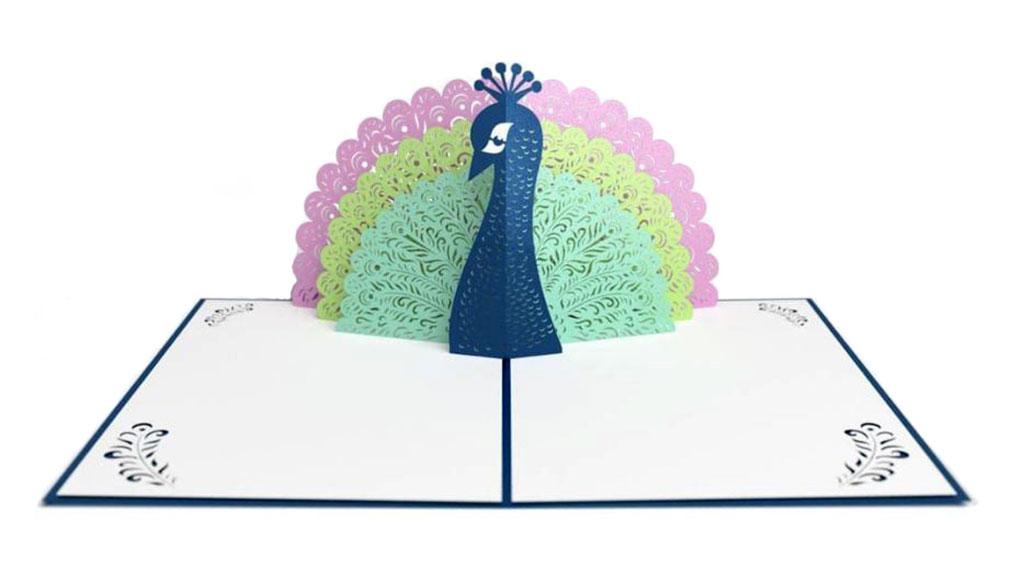 distinct-peacock-4