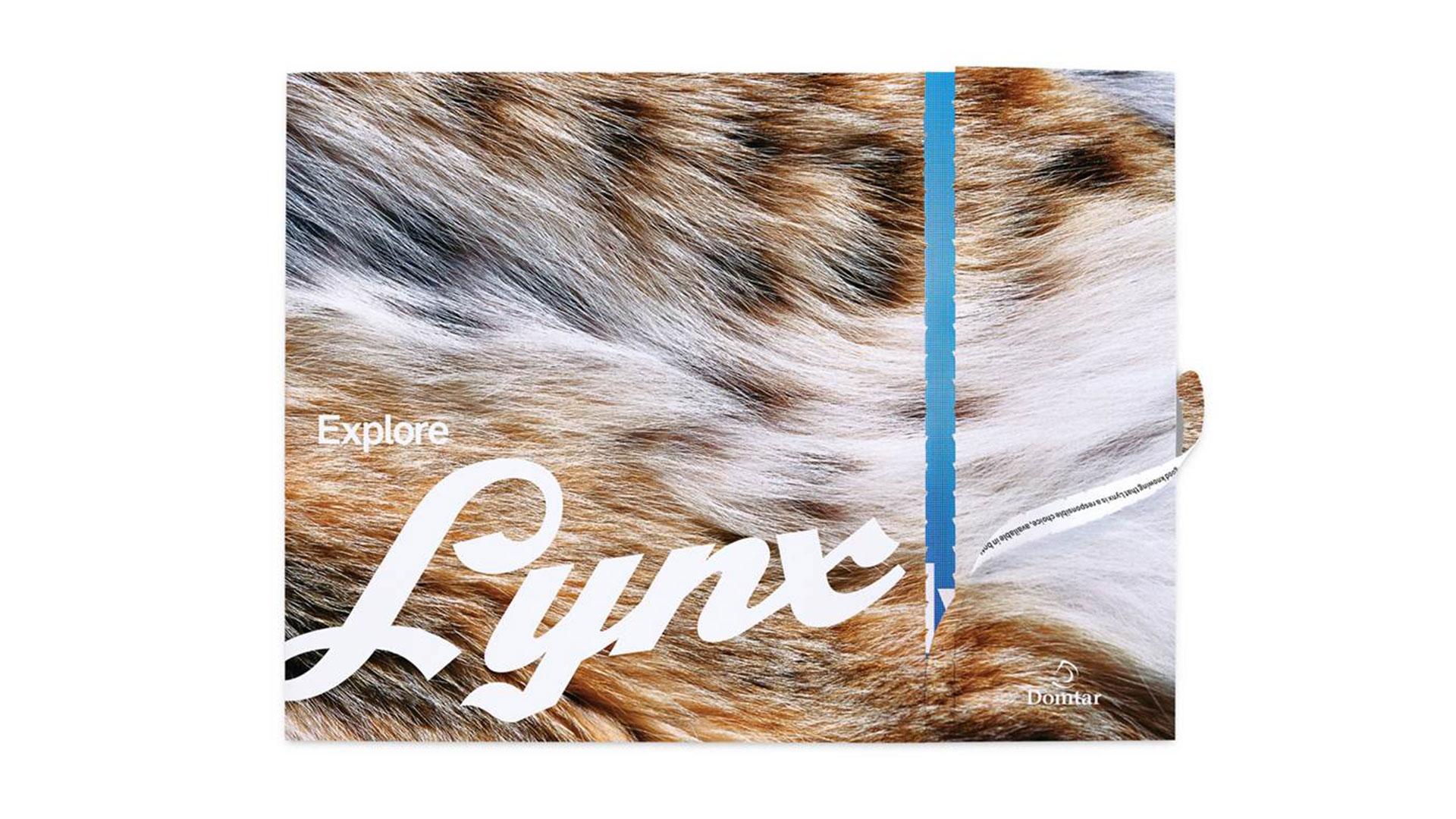 explore-lynx-1