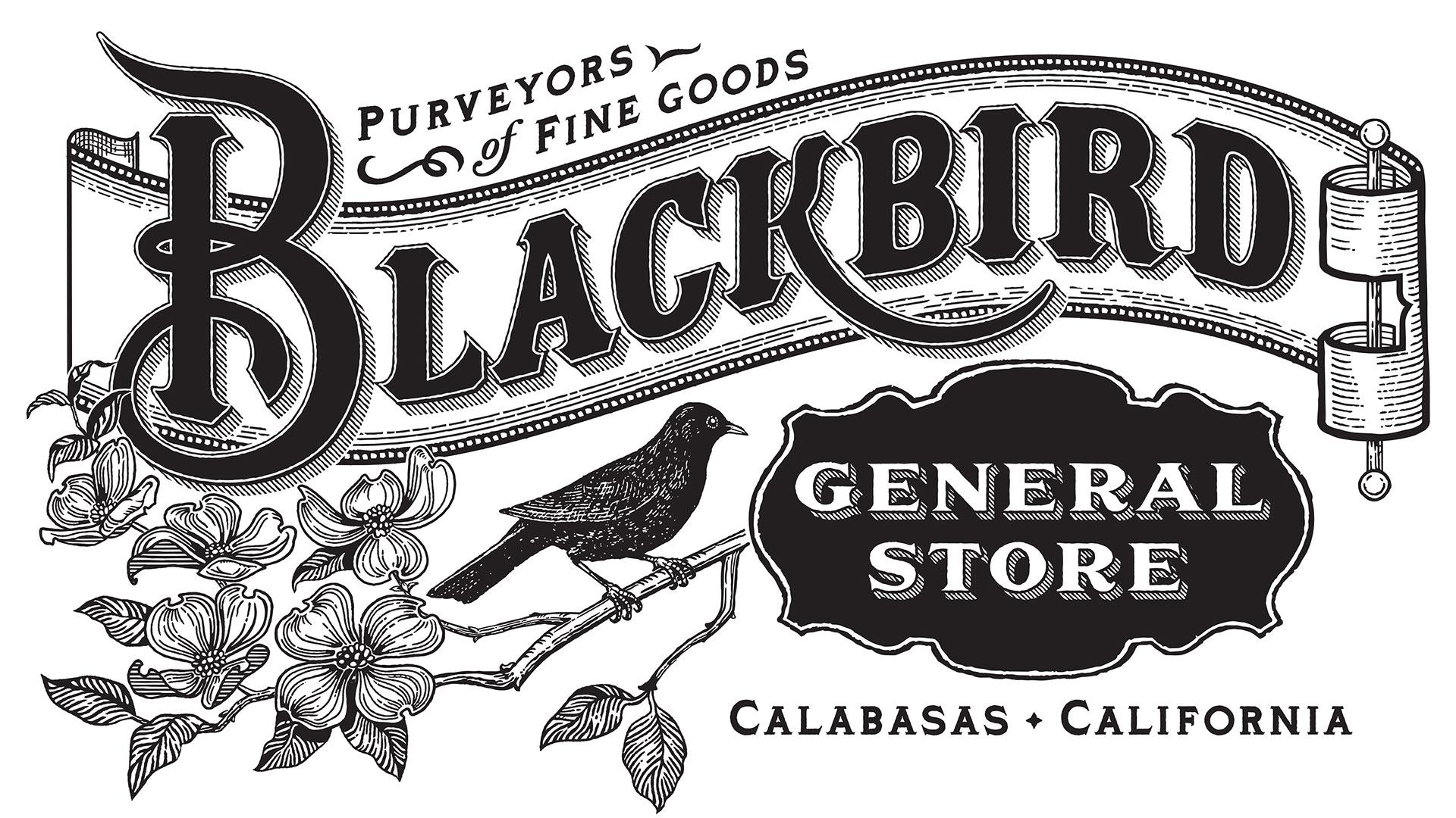 1045-blackbird-6