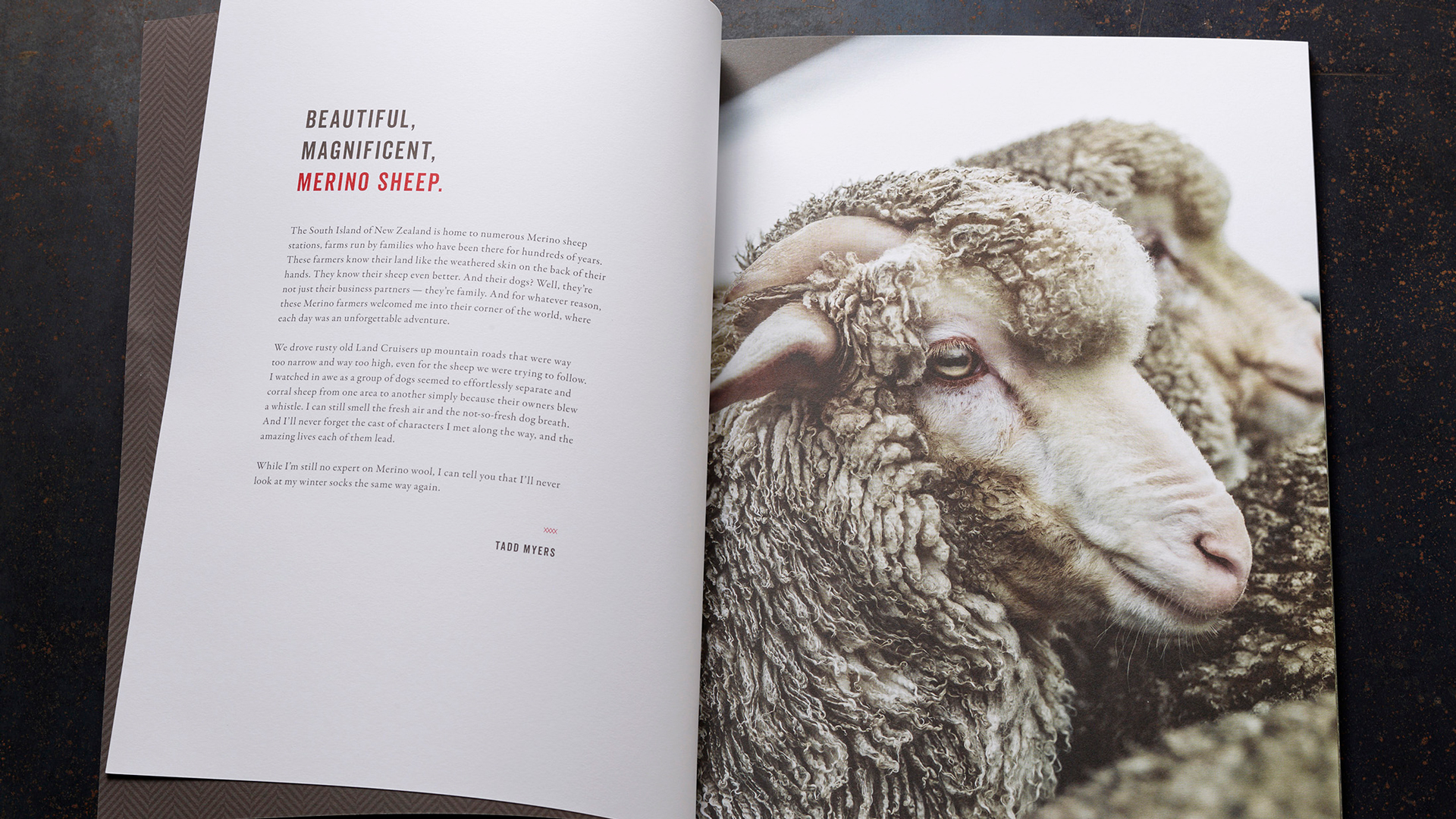 Tadd Myers New Zealand Sheep Farm Promotion - PaperSpecs