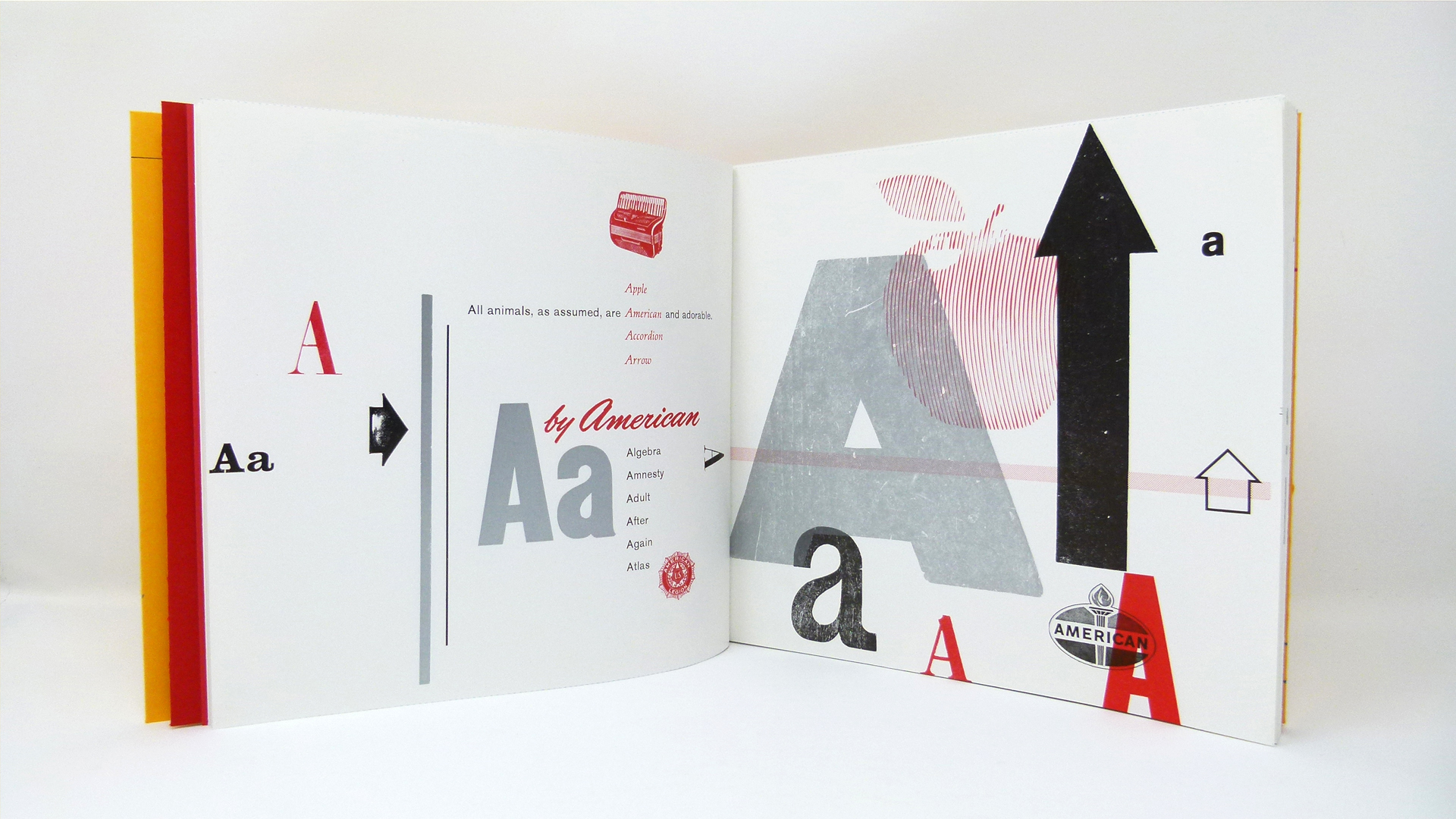 'Drew's ABCs' Letterpress Book - PaperSpecs