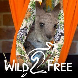 wild2free-charity