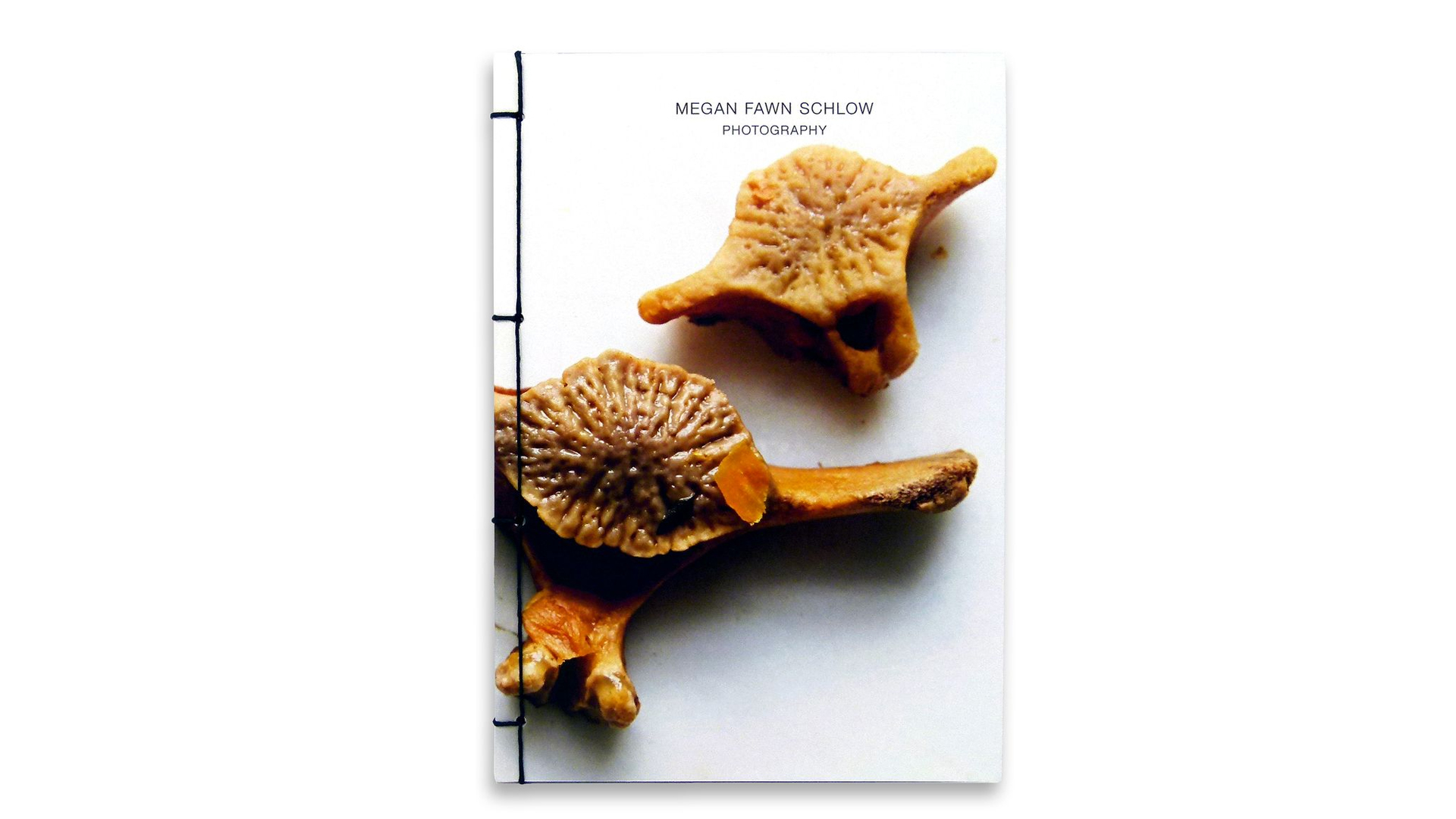 Japanese Stab Binding: Megan Fawn Schlow Photo Book - PaperSpecs