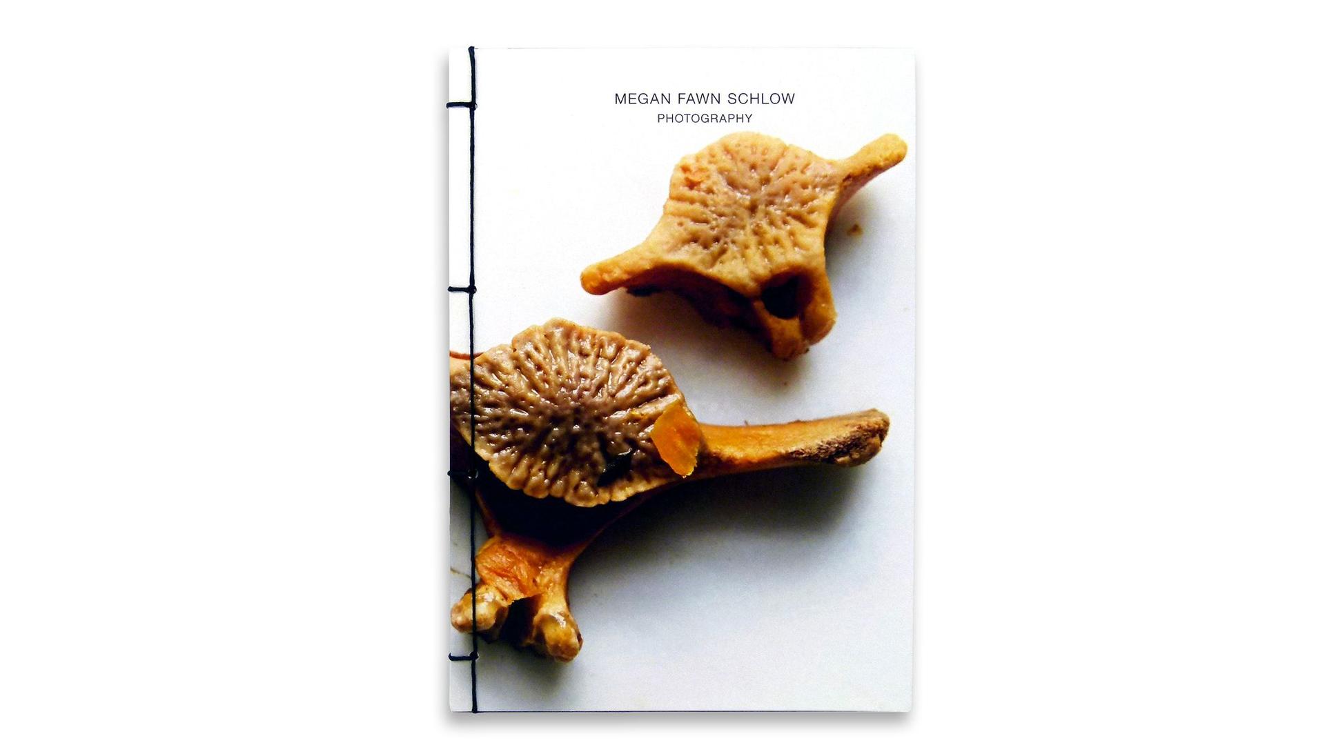Japanese Stab Binding: Megan Fawn Schlow Photo Book - PaperSpecs